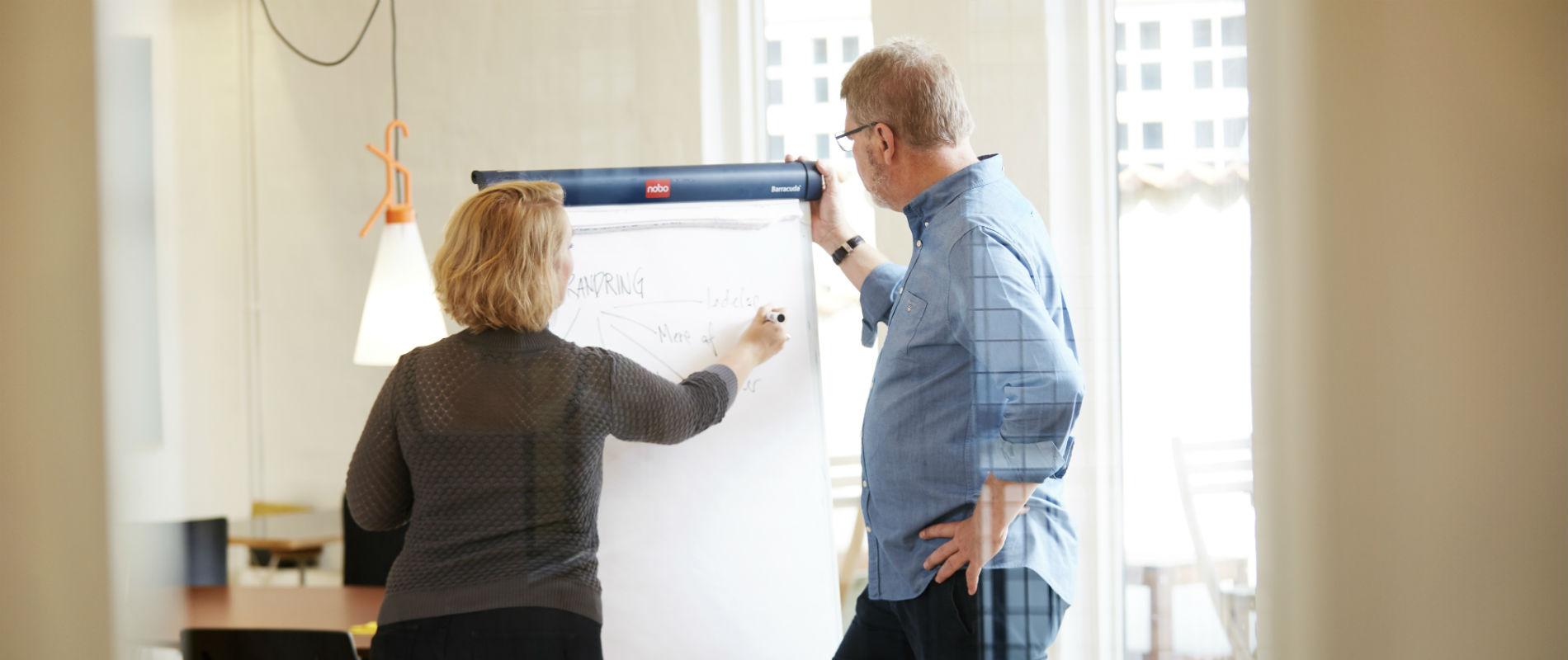 tegning til undervisning, vejledning og projektarbejde til brug i læringsituationer